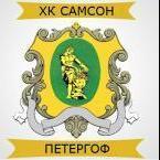 ХК Самсон